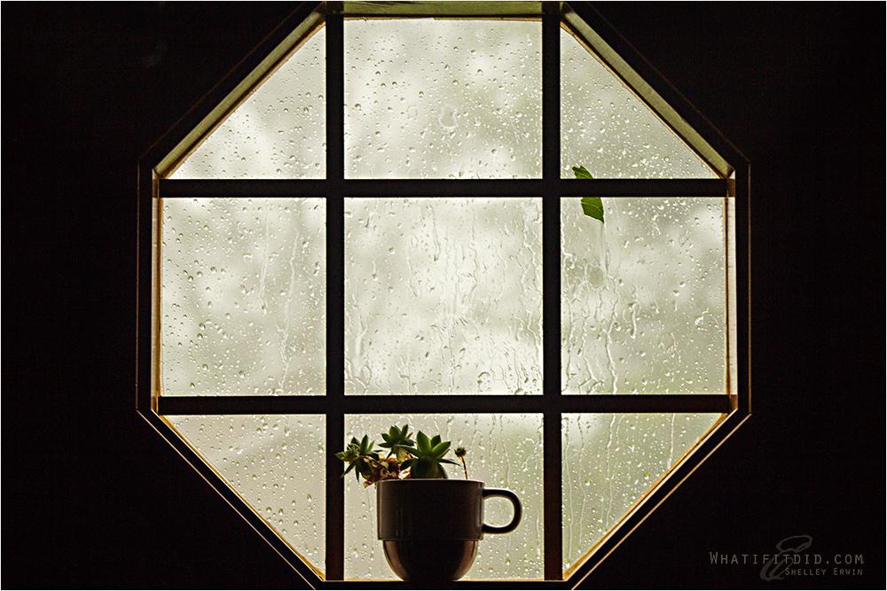 blah blah blah rain