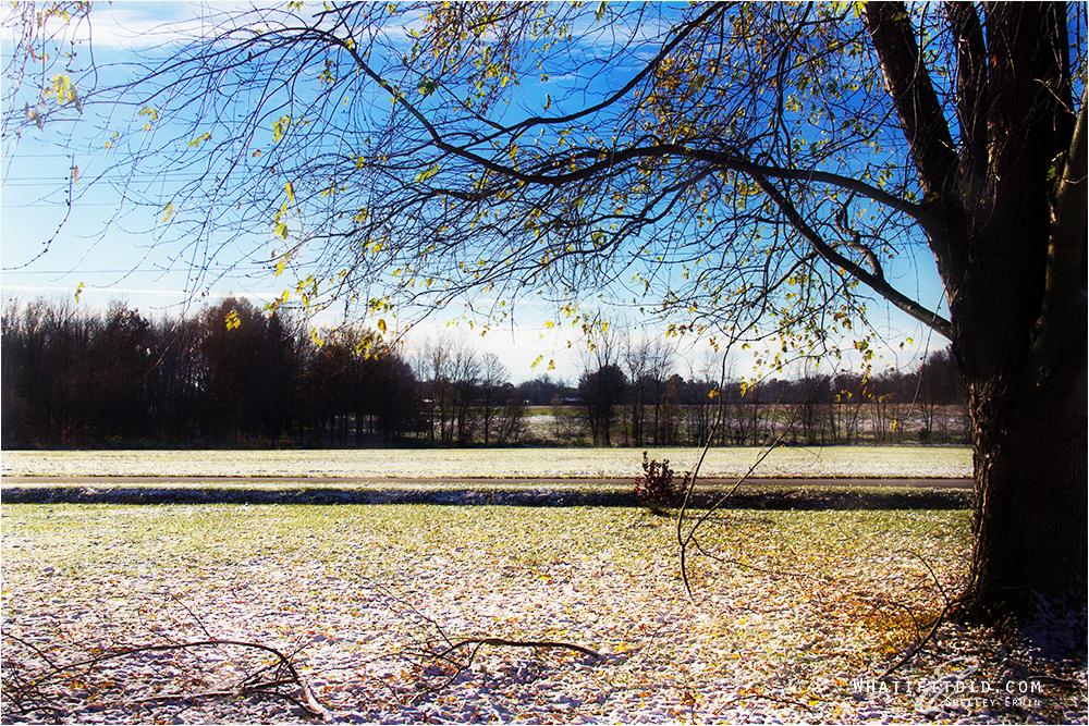 first snow on ground winter season 2013